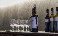 12-Alentejo_Wine_Tasting_Tours_Lisbon